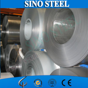 High Quality Prepainted PPGL Steel Coil pictures & photos