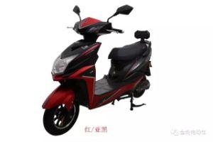 Smart Qualified Electric Scooters Motorbike 350W 800W (HD800-2)