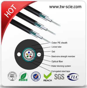 12 Core Sm Armored Outdoor Optic Fiber Cable GYXTW pictures & photos