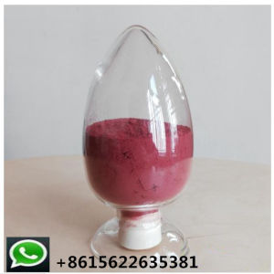 Top Quality Red Yeast Rice Powder on Factory Dirext Supply pictures & photos