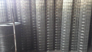 Best Price Good Material Steel Mesh pictures & photos