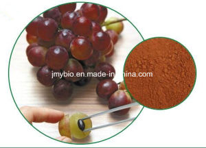 95% Polyphenols Pure Natural Grape Seed Extract, Proanthocyanidins pictures & photos