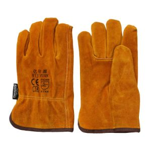 Thinsulate Full Lining Winter Leather Drivers Gloves pictures & photos