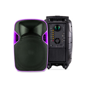 12 Inches Professional Portable LED Projection Multimedia Speaker pictures & photos