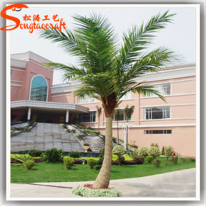 Outdoor Fiberglass Artificial Fake Coconut Plant Tree pictures & photos