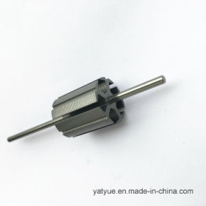 High Quality Motor Parts Rotor 20.2mmx5p pictures & photos
