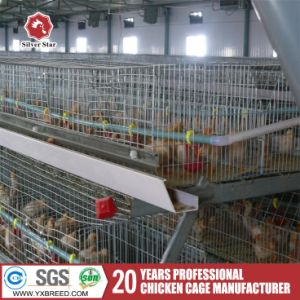 Poultry Farms 1.9X 2.3 Bird Cage for Chicken pictures & photos