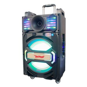 Outdoor Party Bluetooth Trolley Speaker Qx-1212 pictures & photos