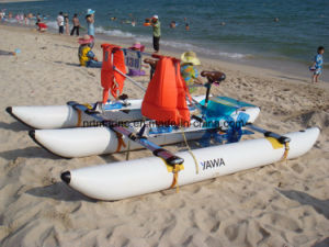 One Person Water Bike Prices Low for Sale pictures & photos