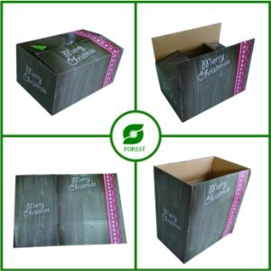 New Design Shipping Box Fp600122 pictures & photos