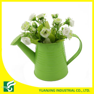 Small Watering Can Flower Planter for Home Garden Decoration pictures & photos