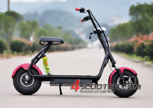 2016 Charming Factory Selling The Lowest Price for Electric Scooter Citycoco Fashion off Road Citycoco E City Scooter pictures & photos