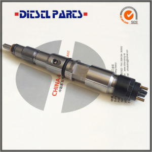 Common Rail Injection Diesel Injector-Common Rail System Fuel Injection pictures & photos