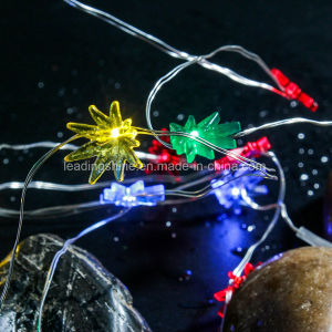 Colorful Seaweed 7FT/2m 20 LED AA Battery Operated Powered Copper Wire LED Fairy Strings Lights pictures & photos