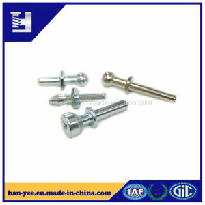 Motorcycle Parts Fastener for Hollow End/Solid pictures & photos