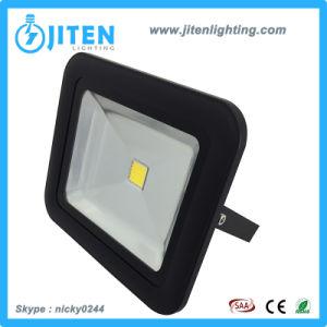 30W COB High Power Lamp Lighting Spot LED Flood Light/Floodlight pictures & photos