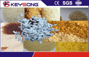 Extruded Artificial Rice Nutritional Rice Food Extruder pictures & photos