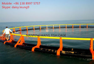 Fish Cages for Sea Aquaculture pictures & photos