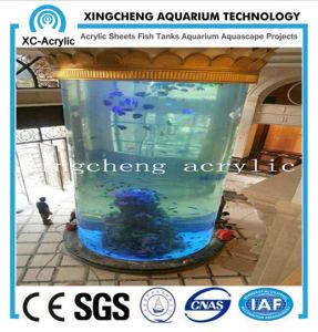Large Customzed Transparent Aquarium pictures & photos