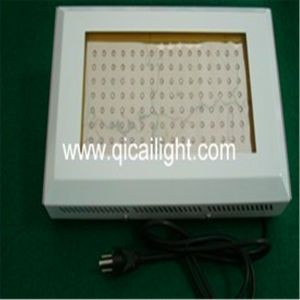 600W High Power LED Grow Light pictures & photos