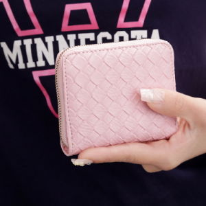 Korean Fashion Female Woven Ladies Purse Wallet Purse Small Hand Bag pictures & photos