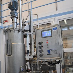 150 Liters Stainless Steel Fermenter (Mechanica stirring) pictures & photos