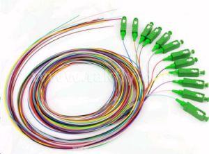 12 Cores Fiber Sc Colored Optical Fiber Pigtails/FC, Sc, LC, St Fiber Optical Pigtails pictures & photos