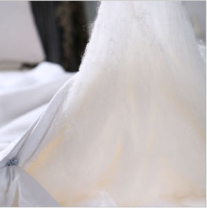 Natural Handmade Soft Mulberry Long Silk Comforter pictures & photos
