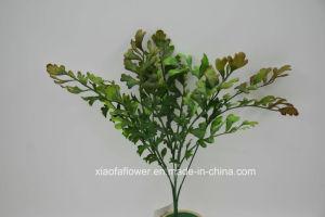 Artificial/Plastic Grass Bush (XF51) pictures & photos