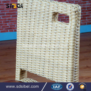 Rattant Material Dining Chair for Home and Hotel pictures & photos