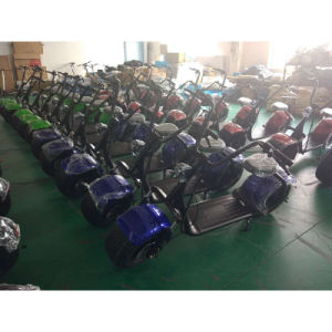 1000W 60V Lithium Battery Brushless Motor Electric Scooter (SZE1000S-3) pictures & photos
