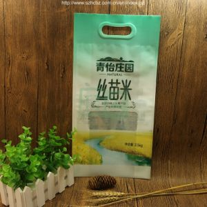 Printed Rice Paper Bag pictures & photos