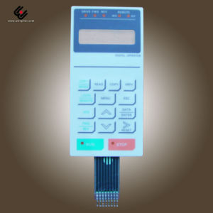 Membrane Switch (MS-012)