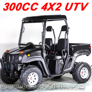 300CC 4X2 UTV (MC-152) pictures & photos