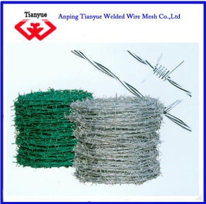 PVC Coated Galvanized Barbed Wire (TYB-0062) pictures & photos