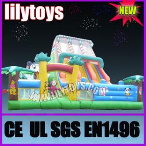 2011 Hot Inflatable Amusement Park pictures & photos