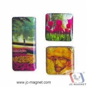 Resin Landscape Magnet pictures & photos