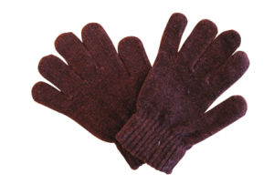 Warm Glove (110)