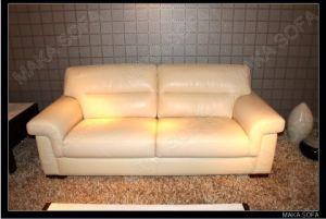 Hot Genuine Leather Sofa (HD-229)