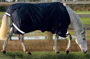 Waterproof and Breathabale Turnout Horse Rug (SMR1615) pictures & photos