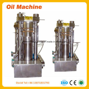 Cheap Oil Mill Oil Plant Oil Expeller Oil Press Machine pictures & photos