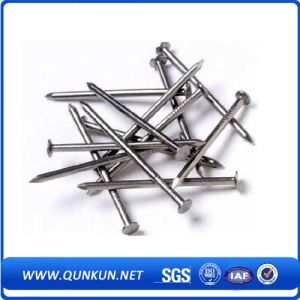 Brick Wall Common Concrete Iron Wire Nails pictures & photos