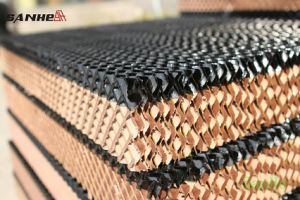 Poultry House Black-Coated Colour Evaporative Cooling Pad pictures & photos