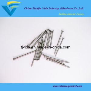 Common Iron Nails with Excellent Quality and Competitive Prices pictures & photos