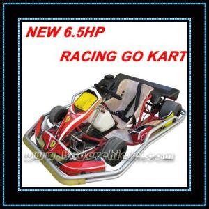 New 6.5HP Racing Go Kart (MC-491)