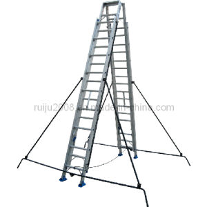 Double Side Extension Aluminum Ladder pictures & photos