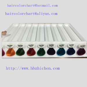 plastic detachable hair color swatch book - Hair Color Swatch Book