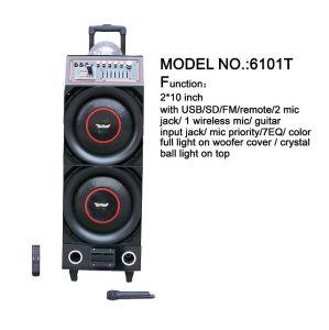 Big Power DJ Speaker 6101t pictures & photos