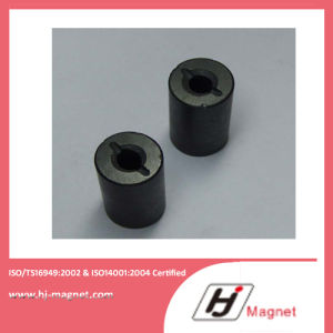 Long Experienced ISO/Ts16949 Certificated Permanent Ferrite Magnet pictures & photos