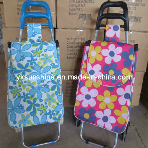 Foldable Shopping Cart (XY-404B1) pictures & photos